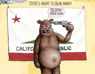 Right to Bear Harm