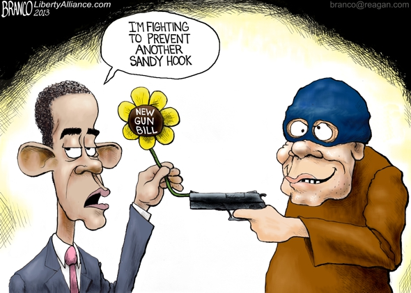 Another Gun Law 590 LA