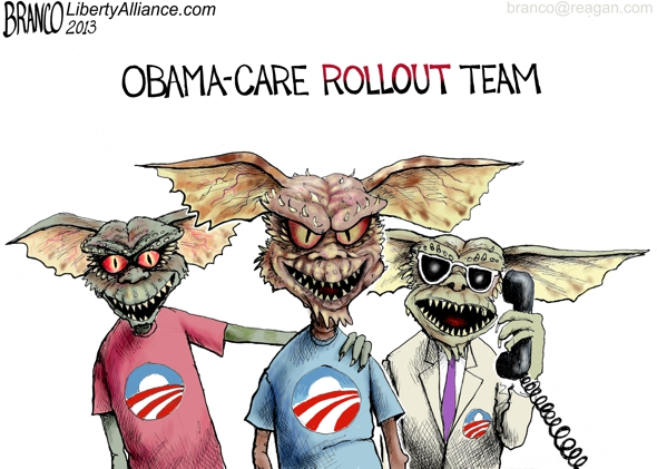 Obama-care Rollout Team