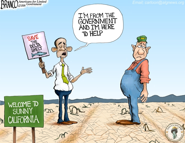 Obama California Drought Cartoon