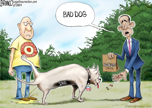 IRS Bonus Cartoon