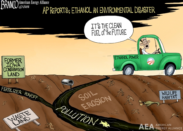 Corn Environment Disaster