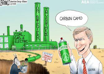 Steyer's Green Scheme