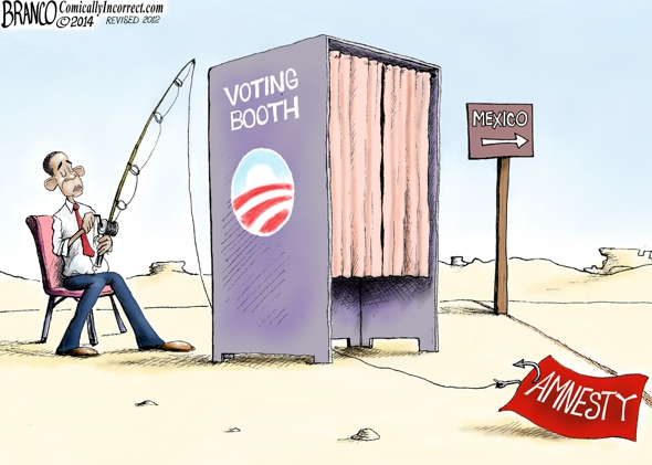 Illegal Immigrant Voting