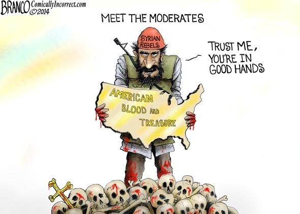 Syrian Rebels Cartoon