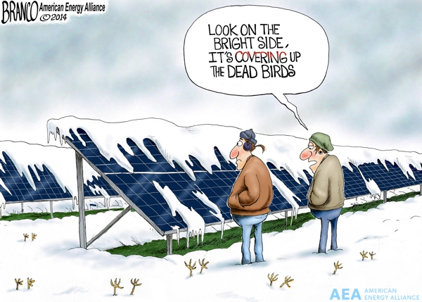 Alternative Energy Cover-up