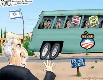 Bibi Wins