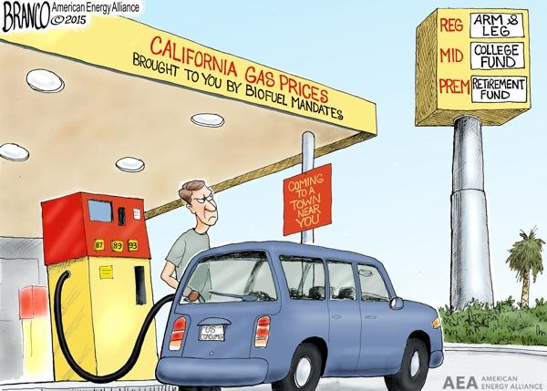 Biofuel Mandates