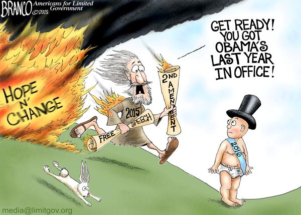 Obama's Last Year