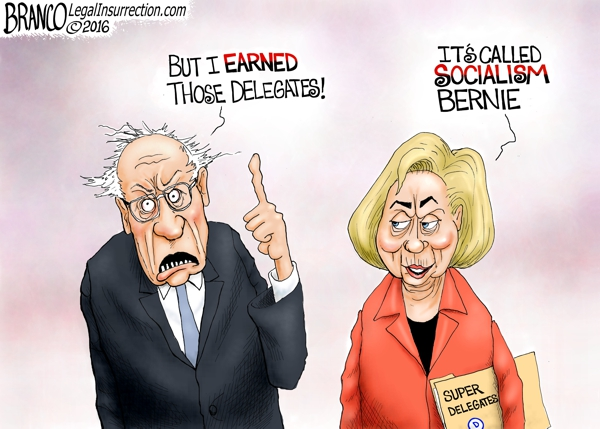 Democrat Delegates