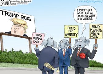 Trump Phenomenon