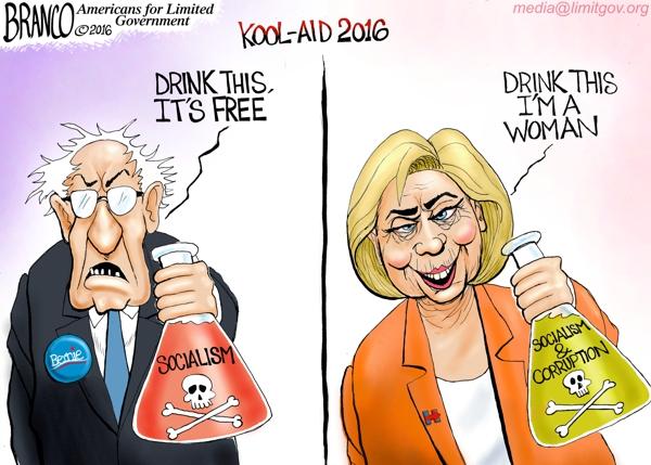 Liberal Kool-aid 2016