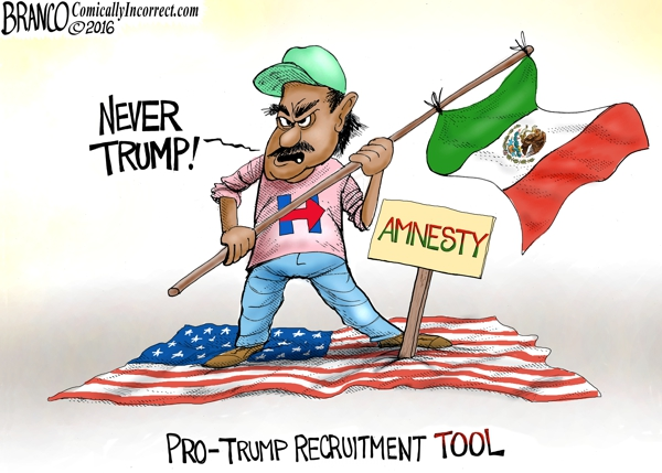 Never Trump Amnesty