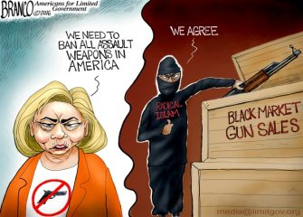 Disarming America