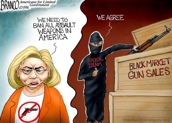 Hillary Disarming America