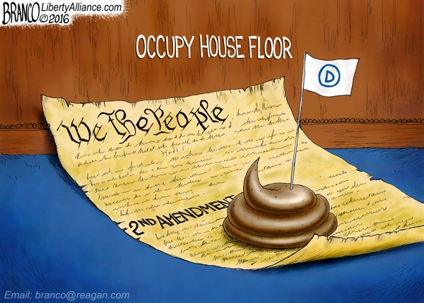 House Democrats Protest