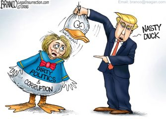 Duck and Cover-Up