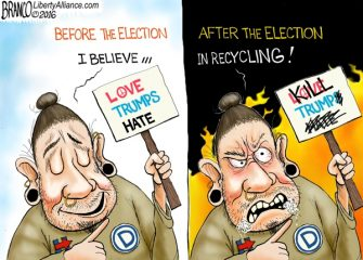 Love Hate Election