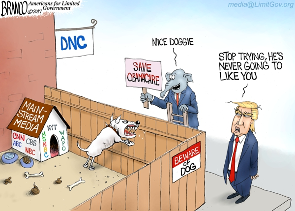 Democrat Party Attack Dog