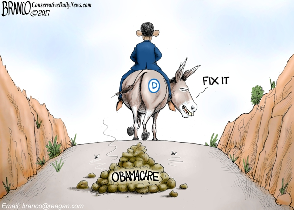 Obamacare Fix it