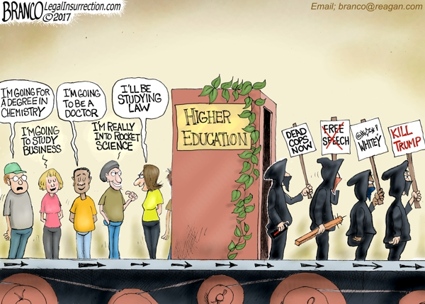 Higher Educated Radicals