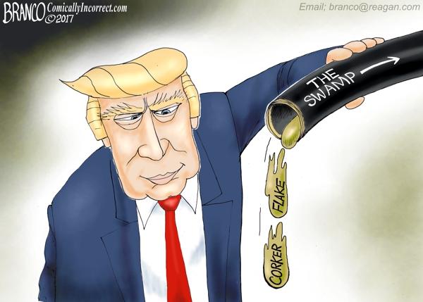 Trump Draining Swamp