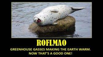 Even the Seals Know a Tall Tale When They Hear One