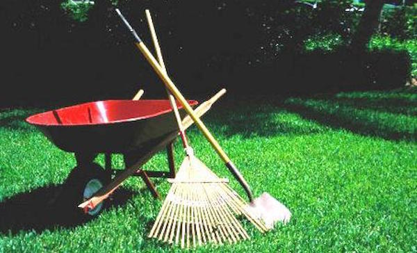 yard work lesson