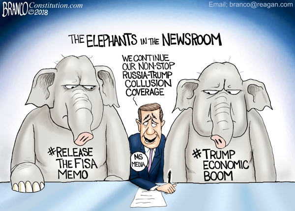 Elephants in the Newsroom