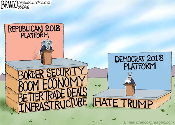 Democrats Run on Trump Hate