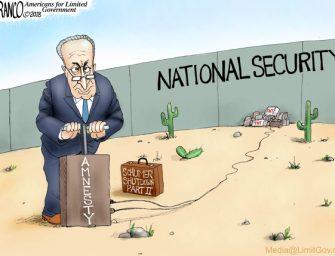 Schumer's Priorities