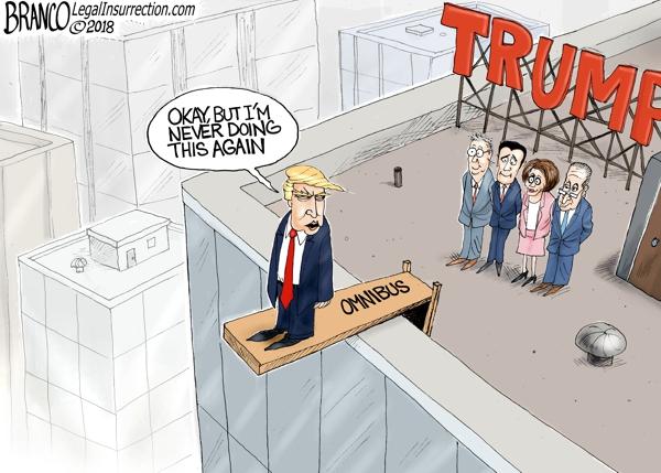 Trump Signs Omnibus Bill