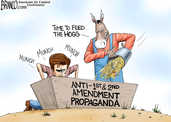 David Hogg Liberal Agenda