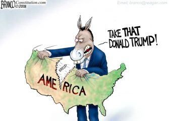 A.F. Branco Cartoon – D-Party of Division