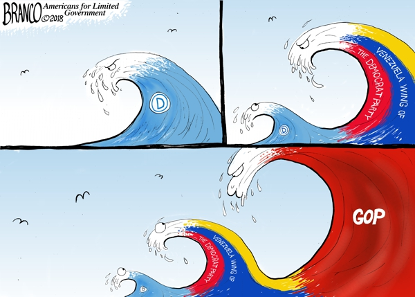 Political Waves 2018
