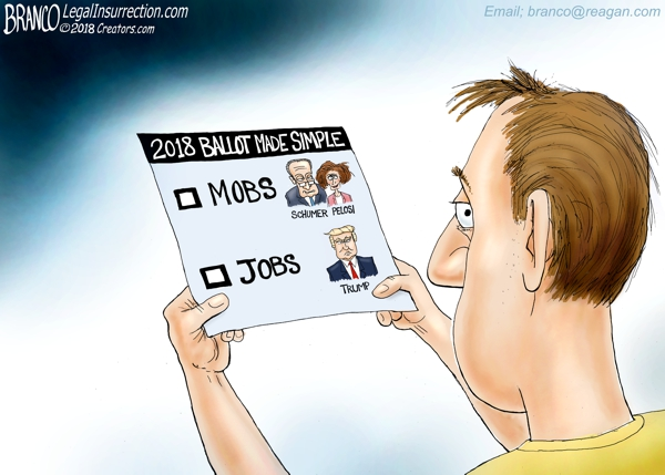 2018 Election Mobs vs Jobs