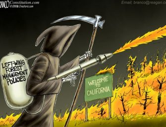 A.F. Branco Cartoon – Fuel for Thought