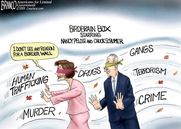 Pelosi and Schumer Blinded by Politics