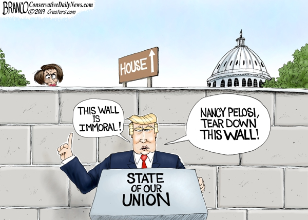 Nancy's Wall of Resistance Against Trump
