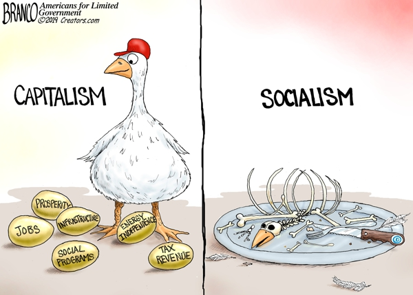 Golden Capitalism Goose and Socialism
