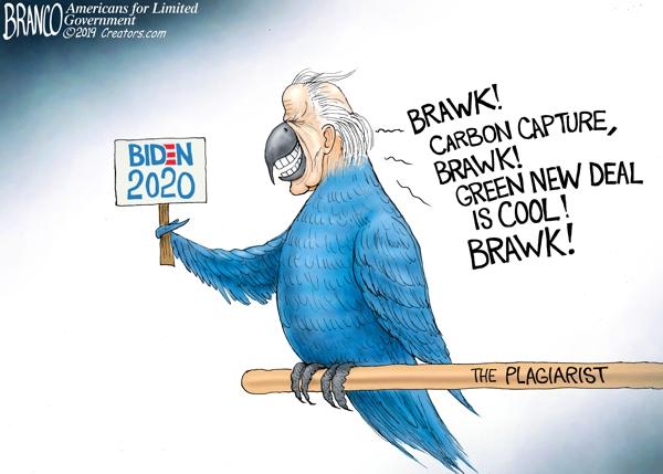 Biden Plagiarist