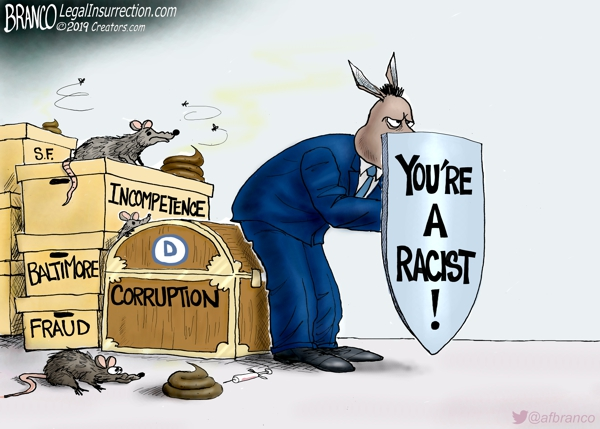 Democrats Use Racist as Cover
