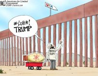 A.F. Branco Cartoon – Don't Fence Me In