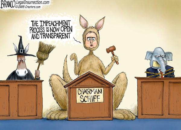 Public Impeachment Hearings