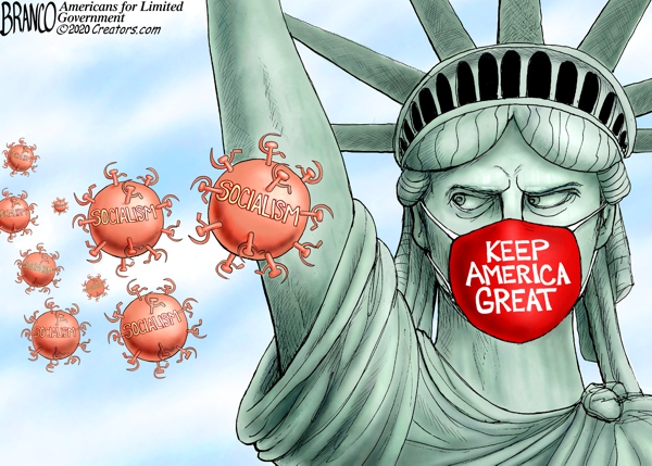 Socialism Pandemic