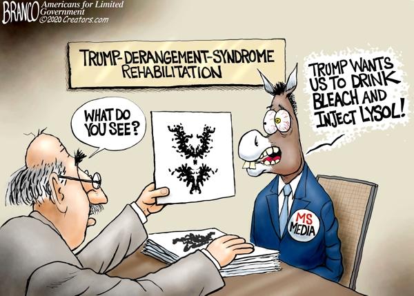 Media Bleach and Lysol Hoax