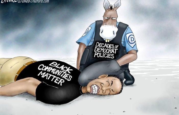 A.F. Branco Cartoon – Defund Democrats