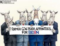 A.F. Branco Cartoon – The Bush League