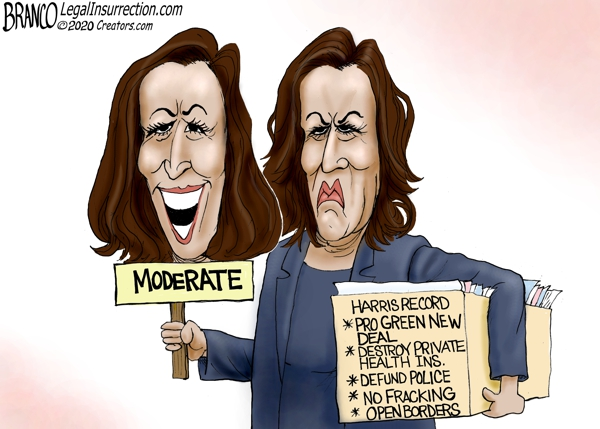 Kamala Harris Pragmatic Moderate