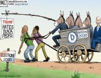 A.F. Branco Cartoon – Riding On The Black Vote